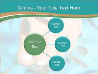 0000072369 PowerPoint Template - Slide 79
