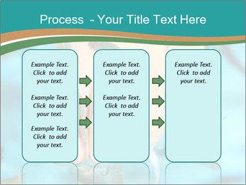 0000072369 PowerPoint Template - Slide 86
