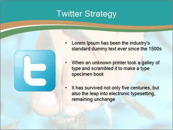 0000072369 PowerPoint Template - Slide 9