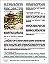 0000072371 Word Template - Page 4