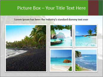 0000072372 PowerPoint Templates - Slide 19