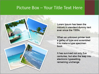 0000072372 PowerPoint Templates - Slide 23
