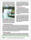 0000072372 Word Templates - Page 4