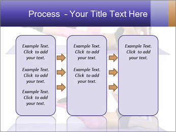 0000072375 PowerPoint Templates - Slide 86