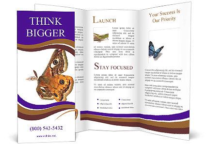 0000072376 Brochure Template