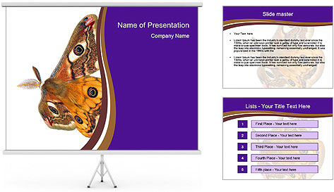 0000072376 PowerPoint Template