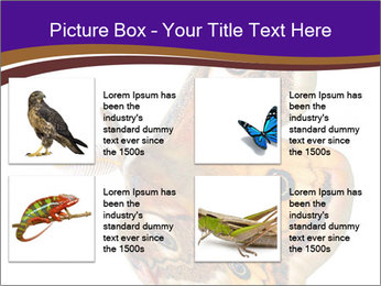 0000072376 PowerPoint Template - Slide 14