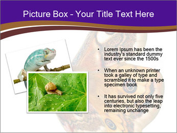 0000072376 PowerPoint Template - Slide 20