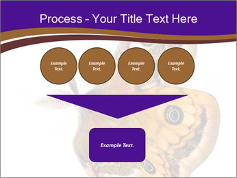 0000072376 PowerPoint Template - Slide 93