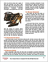 0000072377 Word Template - Page 4