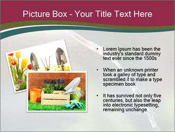 0000072385 PowerPoint Templates - Slide 20
