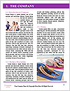 0000072393 Word Template - Page 3