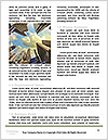 0000072396 Word Template - Page 4