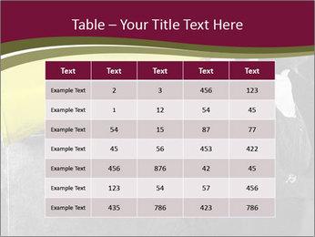 0000072400 PowerPoint Template - Slide 55