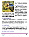 0000072411 Word Templates - Page 4