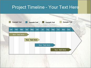 0000072413 PowerPoint Templates - Slide 25