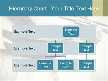 0000072413 PowerPoint Templates - Slide 67