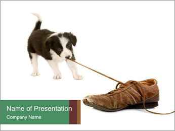 0000072417 PowerPoint Template