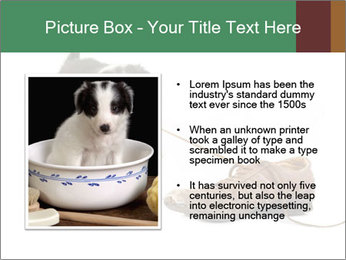 0000072417 PowerPoint Templates - Slide 13