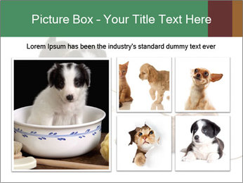 0000072417 PowerPoint Templates - Slide 19