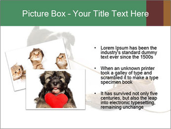 0000072417 PowerPoint Templates - Slide 20