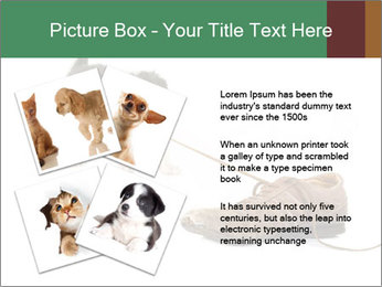 0000072417 PowerPoint Templates - Slide 23