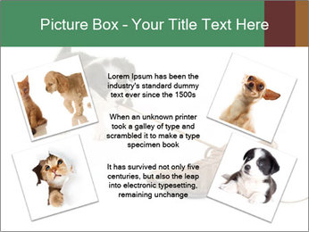 0000072417 PowerPoint Templates - Slide 24