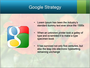 0000072419 PowerPoint Template - Slide 10