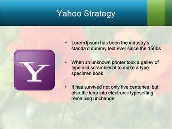 0000072419 PowerPoint Templates - Slide 11