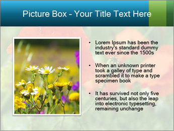 0000072419 PowerPoint Templates - Slide 13