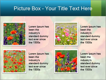 0000072419 PowerPoint Template - Slide 14