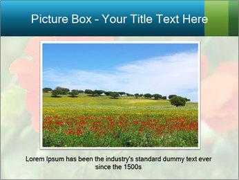 0000072419 PowerPoint Template - Slide 15