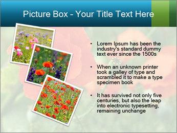 0000072419 PowerPoint Templates - Slide 17
