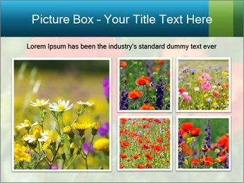 0000072419 PowerPoint Templates - Slide 19