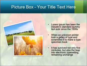 0000072419 PowerPoint Template - Slide 20