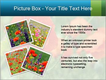 0000072419 PowerPoint Templates - Slide 23