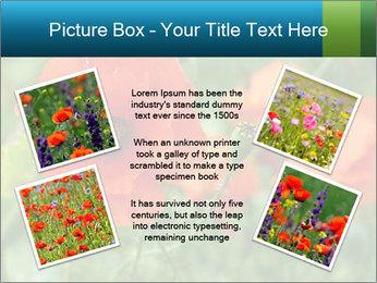 0000072419 PowerPoint Templates - Slide 24