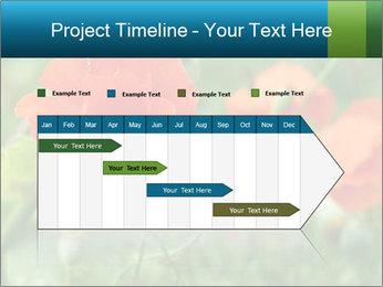 0000072419 PowerPoint Templates - Slide 25
