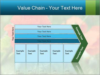 0000072419 PowerPoint Templates - Slide 27