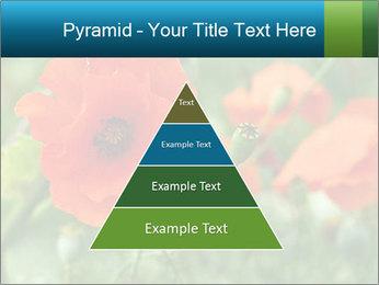 0000072419 PowerPoint Templates - Slide 30