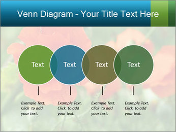 0000072419 PowerPoint Templates - Slide 32