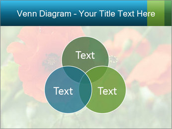 0000072419 PowerPoint Templates - Slide 33
