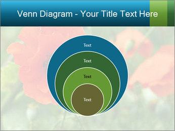 0000072419 PowerPoint Templates - Slide 34