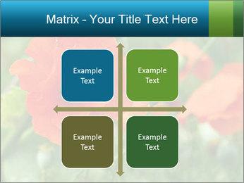 0000072419 PowerPoint Templates - Slide 37