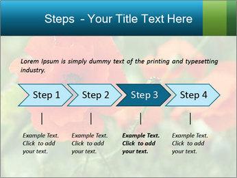 0000072419 PowerPoint Template - Slide 4
