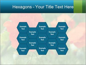 0000072419 PowerPoint Templates - Slide 44
