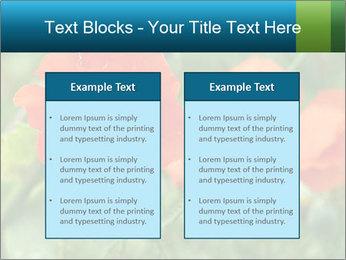 0000072419 PowerPoint Templates - Slide 57