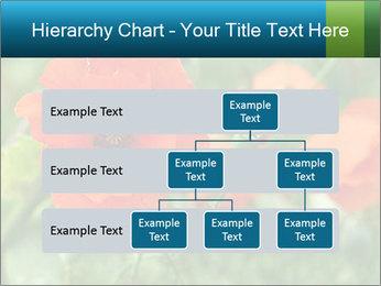 0000072419 PowerPoint Templates - Slide 67