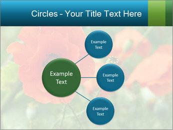 0000072419 PowerPoint Templates - Slide 79