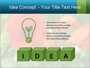 0000072419 PowerPoint Template - Slide 80